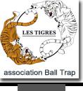 tigres-sac-publicitaire-coton-toile-bio-tote-bag